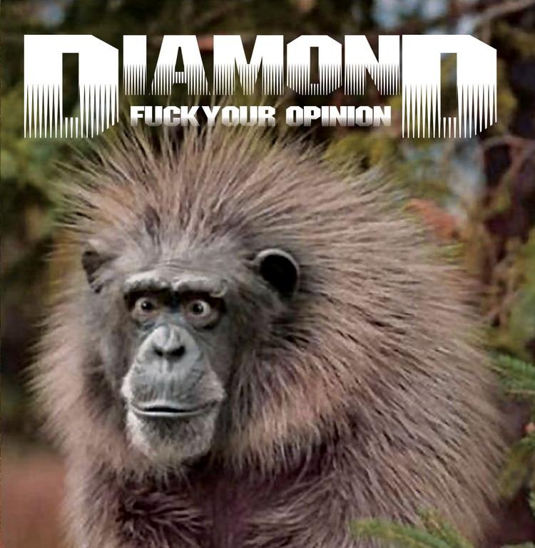 Les pires pochettes Diamond%20title%20small